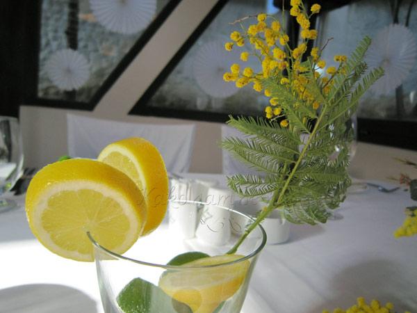 dekoracija vencanja limun i mimoza