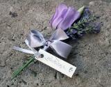 cvetici-za-kicenje-ljubicasti