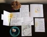 pozivnice-za-vencanje-belo-zuta-mapa-meni-rsvp